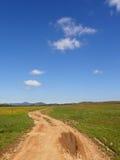 Route avec de la boue Image stock