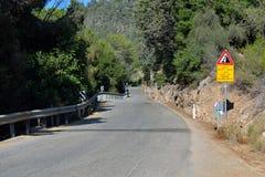 Route avec des arbres Image libre de droits