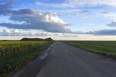 Route avec des gisements de graine de colza, avec un ciel nuageux au coucher du soleil photos stock