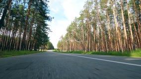 Route avec des pins et un vélo se déplaçant le long de lui banque de vidéos