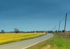 Route avec des poteaux de téléphone dans le domaine de campagne Image stock