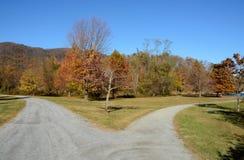 Route bifurquée, beaux arbres de chute Photographie stock