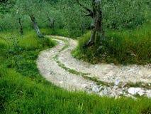 Route blanche Images libres de droits