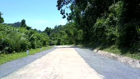 Route blanche grise avec les poteaux et le panneau routier verts d'ombres d'arbre banque de vidéos