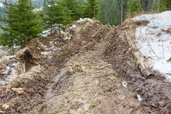 Route boueuse dans la forêt Images stock