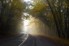 Route brumeuse Photo libre de droits