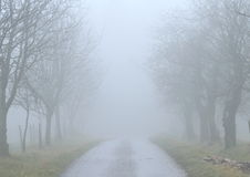 Route brumeuse Photographie stock libre de droits