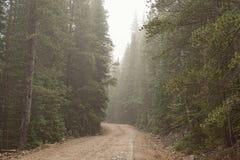 Route brumeuse Images libres de droits