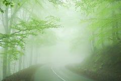 Route brumeuse dans la forêt photographie stock