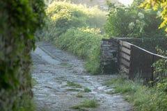 Route brumeuse de village à l'aube images stock