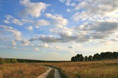 Route, champ, ciel Image stock
