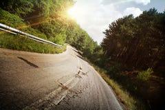 Route courbant par la forêt Images libres de droits