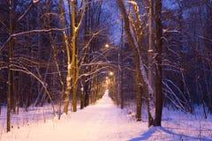 Route couverte de neige de nuit Image stock