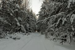 route couverte de neige par le cimetière orthodoxe dans la forêt Image libre de droits
