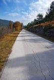 Route criquée Photographie stock