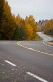Route Curvy photographie stock libre de droits