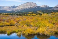 Route d'or à la montagne photos libres de droits