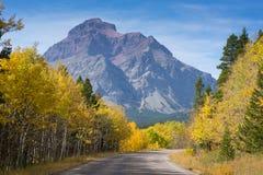 Route d'or à la montagne photos stock
