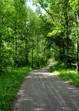 Route d'été Photographie stock libre de droits