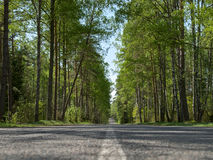 Route d'été Image stock