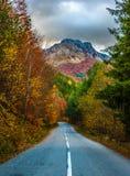 Route d'Autom Images libres de droits