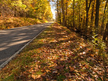 Route d'automne Photographie stock