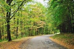 Route d'automne Images libres de droits