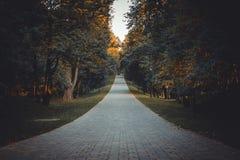 Route d'automne Photographie stock libre de droits