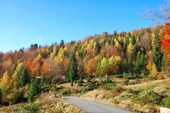 Route d'automne Photo stock