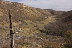 Route d'enroulement dans le MESA Verde Images stock