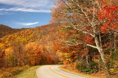 Route d'enroulement par les collines en automne Image stock