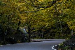 Route d'enroulement scénique - automne/automne colore - entaille de contrebandiers - Vermont photos libres de droits