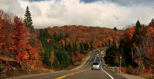 Route d'entraînement de couleur d'automne Photo stock