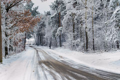 Route d'hiver Image stock