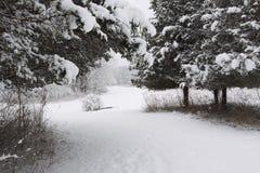 Route d'hiver Photos stock