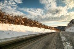 Route d'hiver au coucher du soleil avec l'élevage avec des buissons Image stock