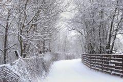 Route d'hiver avec les barrières et les arbres neigeux en chutes de neige photo libre de droits