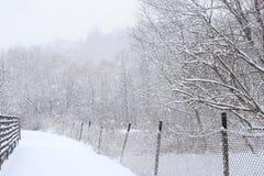 Route d'hiver avec les barrières et les arbres neigeux en chutes de neige photo stock