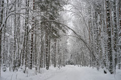 Route d'hiver complètement de neige Photographie stock