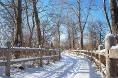 Route d'hiver dans la forêt parmi des arbres et barrière avec le ciel bleu et la neige Photos stock
