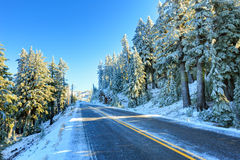 Route d'hiver de Milou photos libres de droits