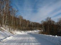 Route d'hiver par la forêt Photo stock