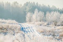 Route d'hiver par le champ neigeux photos stock