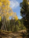 Route dans Aspen images libres de droits