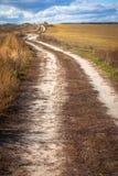 Route dans des domaines d'automne Photographie stock libre de droits