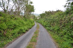Route dans Dingle, comté Kerry, Irlande Images stock