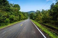 Route dans forrest Image libre de droits