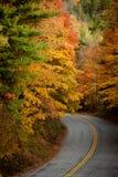 Route dans l'automne photos libres de droits