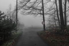 Route dans la brume Photographie stock