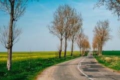 Route dans la campagne photos libres de droits
